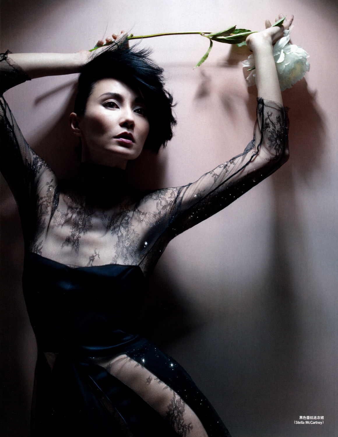maggie cheung 2016maggie cheung instagram, maggie cheung 2016, maggie cheung inglourious basterds, maggie cheung stephen chow, maggie cheung height weight, maggie cheung husband olivier assayas, maggie cheung leslie cheung, maggie cheung tumblr, maggie cheung filmography, maggie cheung, maggie cheung 2015, maggie cheung 2014, maggie cheung latest news, maggie cheung man yuk, maggie cheung in the mood for love, maggie cheung wiki, maggie cheung facebook, maggie cheung imdb, maggie cheung young, maggie cheung jackie chan