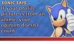 sonic_saysn_if_your_profile_picture_is_from_an_anime_27274245_1_.png